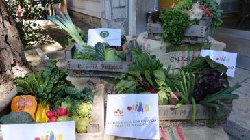 Mercado Camara Agraria