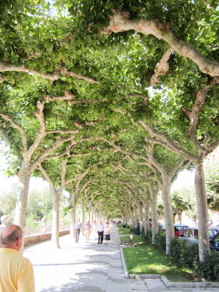Paseo del Espolon Burgos
